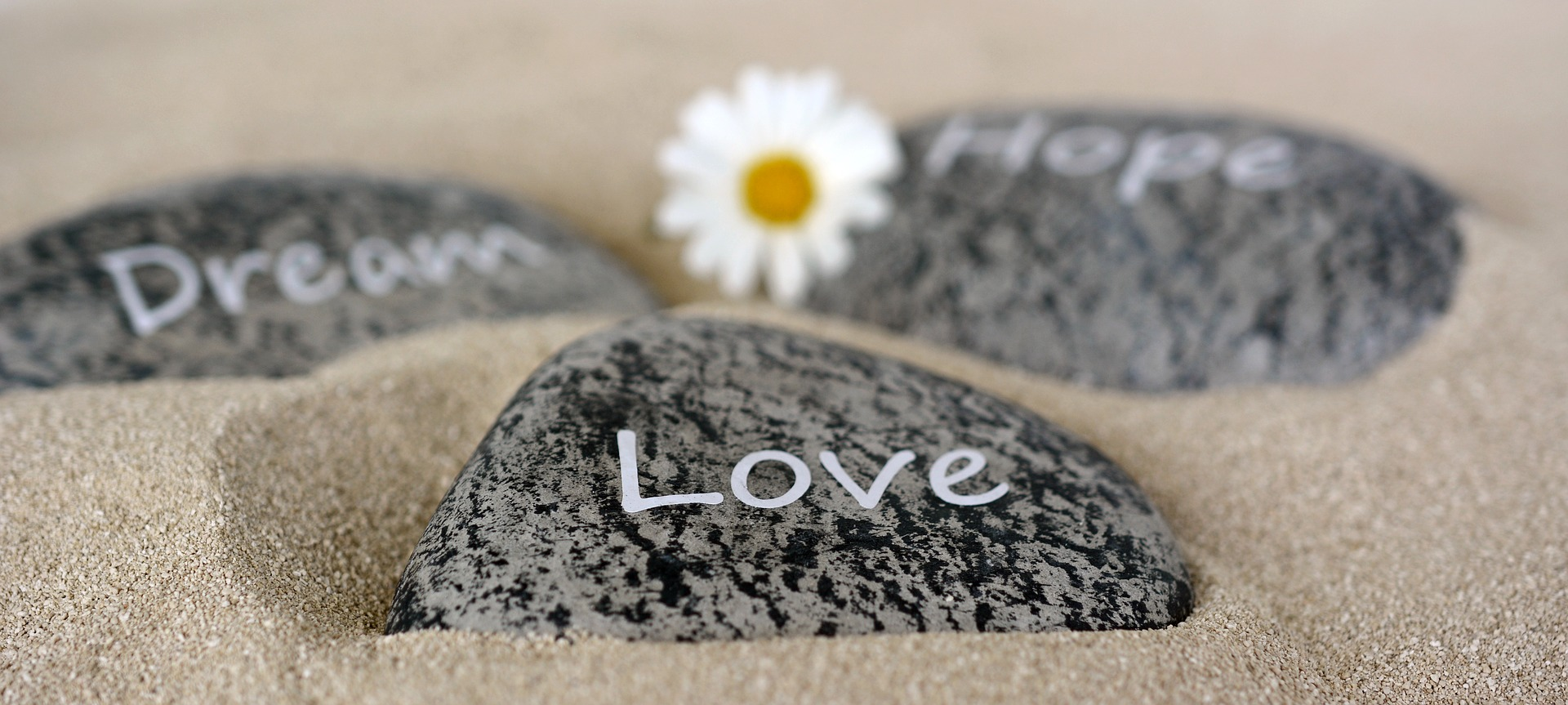 引き寄せ,法則,恋愛成就